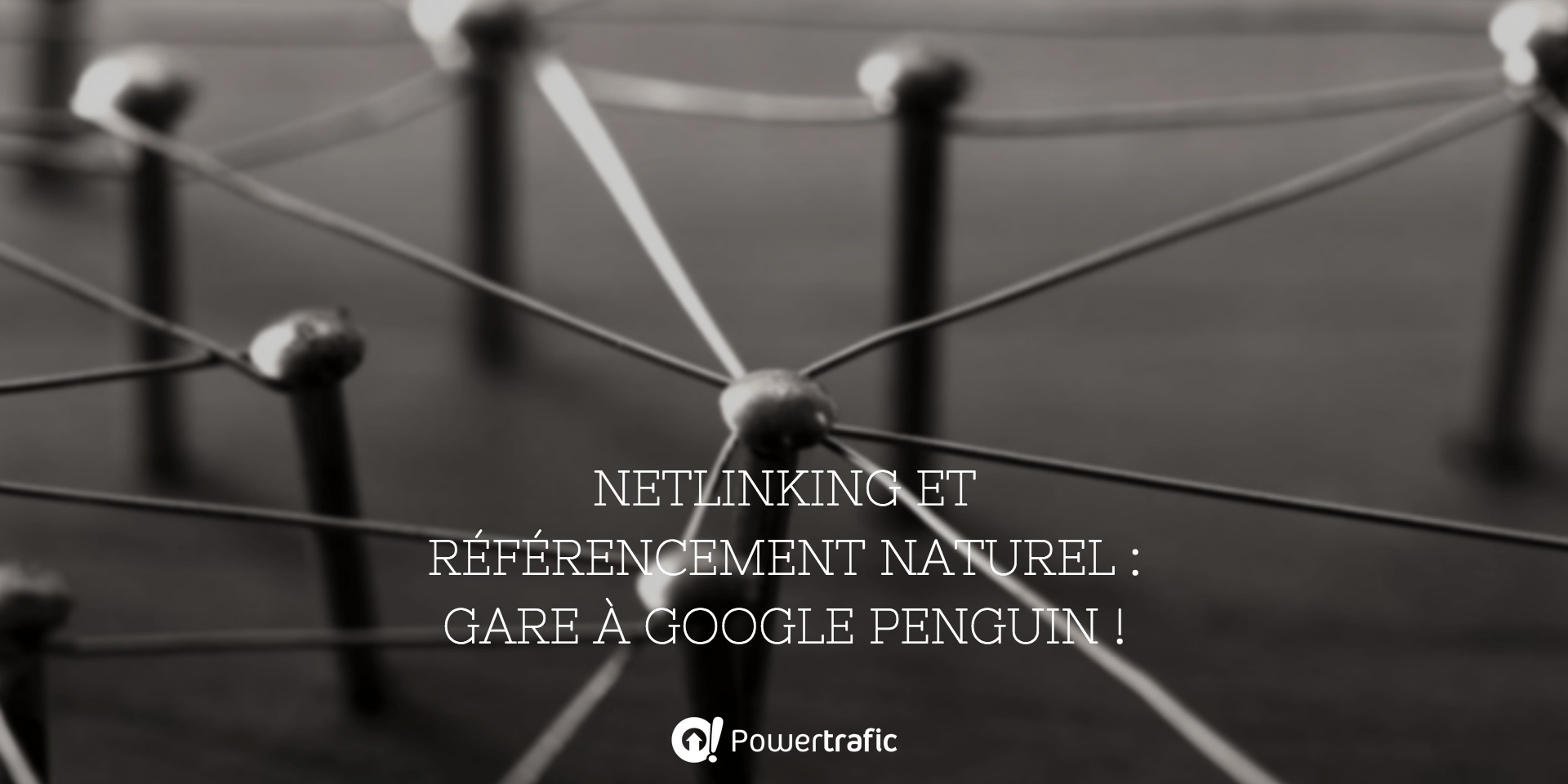 https://www.powertrafic.fr/netlinking-google-penguin/